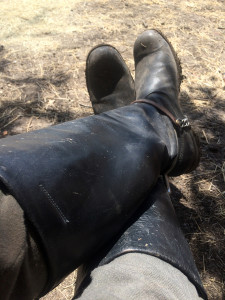 equestrian boots, riding, riding boots, riding shoes,